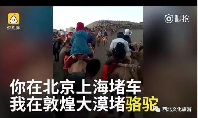 """旺季住人淡季住牛 景区惊现""""牛棚宾馆""""要价588旧车换新车"""