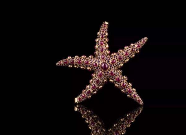 雷内·博文的海星胸针
