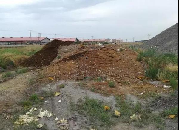 正邦集团两家养殖场内粪污遍地