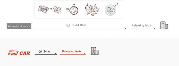 国产CAR-T!首创FasTCAR-19治疗B细胞急性淋巴细胞白血病完全缓解率95.8%,制备仅需1天!
