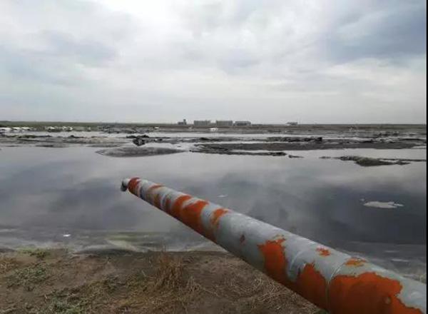正邦集团养殖场大量高浓度废水排入污水暂存池