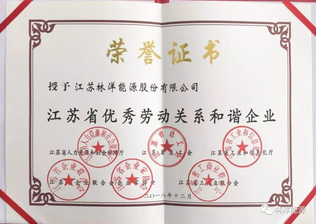 """林洋能源被授予""""江苏省优秀劳动"""
