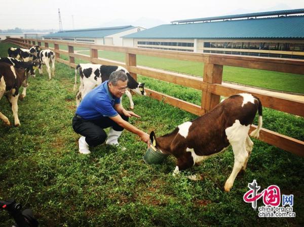 为了总书记的嘱托,让祖国的下一代喝上好奶粉——记全国人大代表、君乐宝乳业集团总裁魏立华