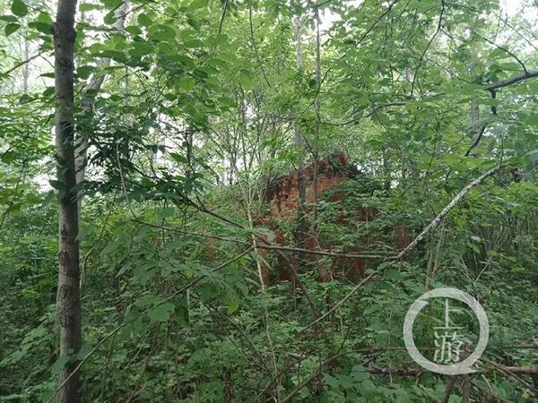 6月9日,河南罗山县汪延勋的房子早已倒塌。