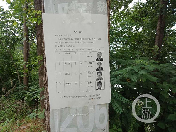 6月9日,河南罗山县一处电线杆上张贴着官方对滞销境外胡清强等4人的公告。