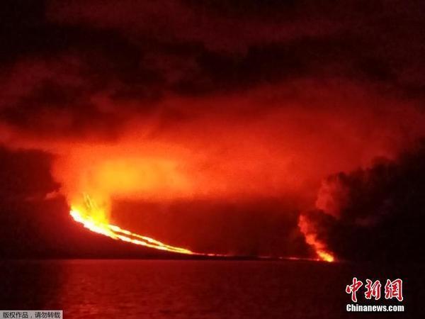 加拉帕戈斯群岛火山爆发 岩浆流淌成河