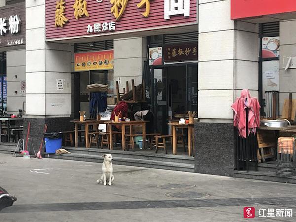 新百胜网上点击部