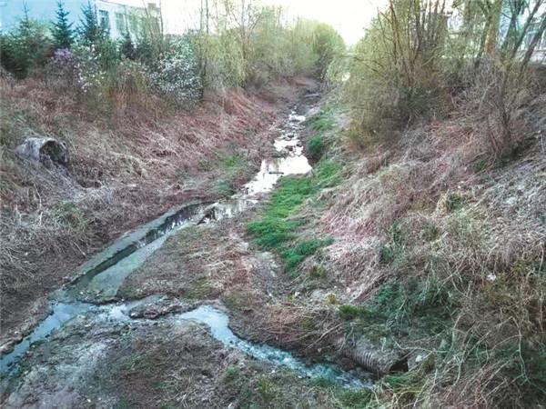 偷排污水 呼兰一家造纸厂被罚63万