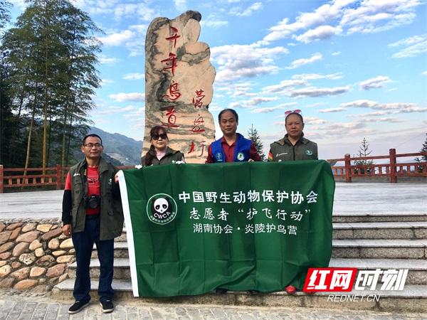 湖南省候鸟守护者跨省巡护、宣传,为候鸟迁徙保驾护航