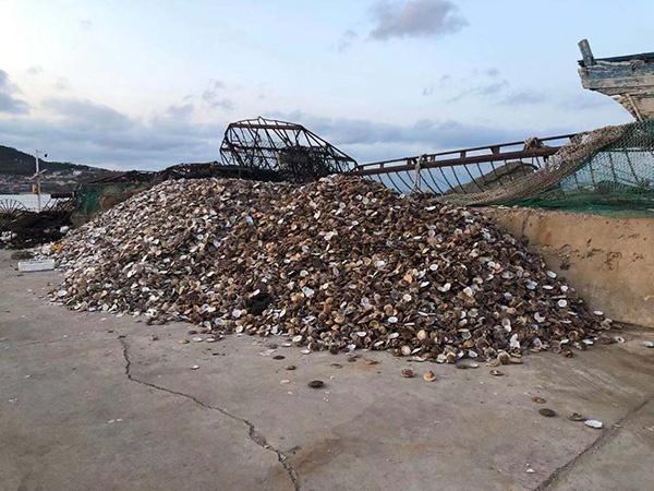 迪威贵宾会开户·全力推进水资源配置工程规划建设 保障粤西人民生产生活用水需求