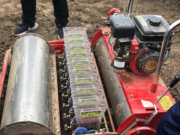 <strong>来看上海机械化生产绿叶菜,一小</strong>