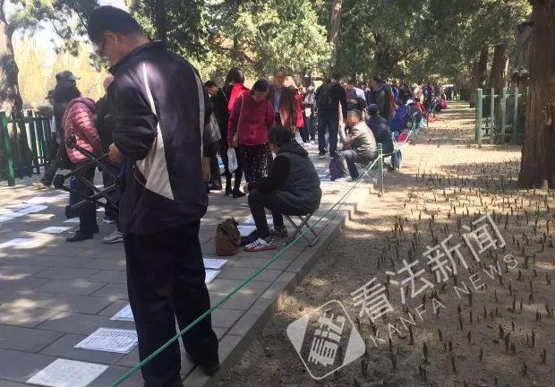 中山公园的相亲角队伍达长一百多米。摄/法制晚报·看法新闻记者 杨小嘉