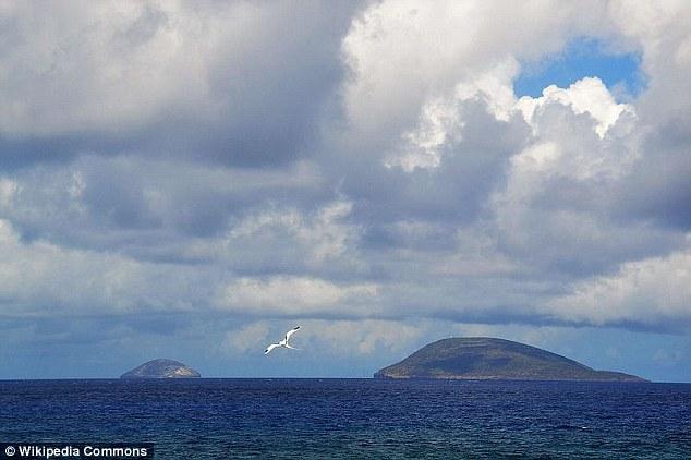 澳工程师称发现MH370残骸且满是弹孔 官员否认