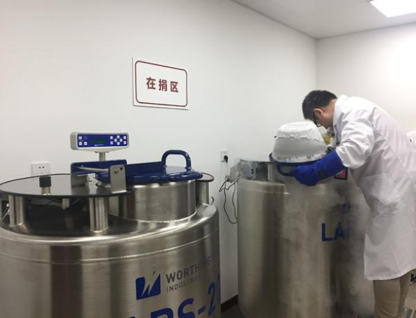 捐献出的精液被保存在液氮中。本文图片 澎湃新闻记者 陈斯斯 摄