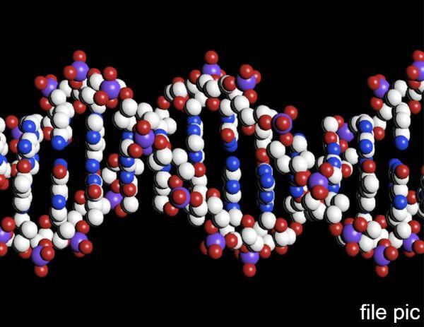 贺建奎声称为两名婴儿改造了基因(新华社)