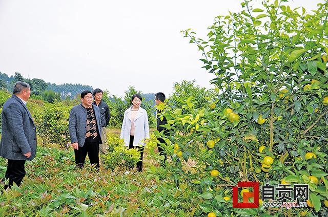 全省首批扶持村集体经济试点资金在荣县开花结果
