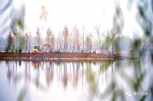 周边居民有福了!桃花源湿地公园传来新动静