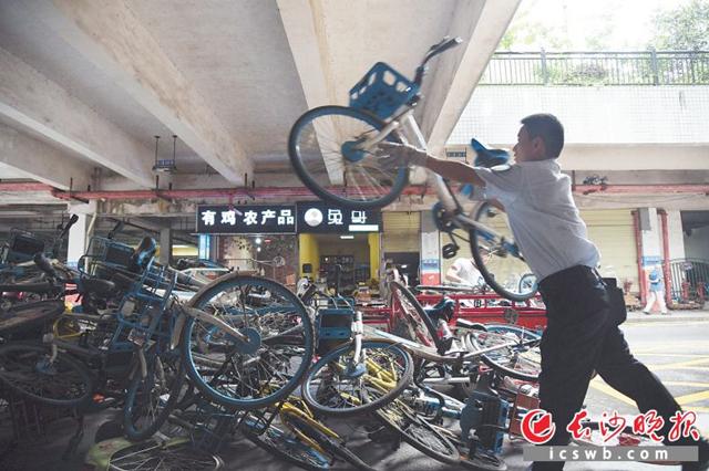 湘江世纪城小区多处公共空间共享单车乱停放 谁来管?