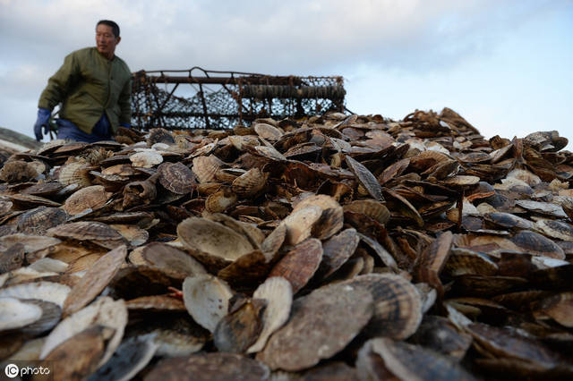 x7集团|日媒:欧盟或放宽日本农水产品进口限制