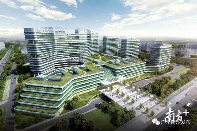 广州南沙区与广东省中医院共建临床科研平台,助力大湾区中医药高地建设