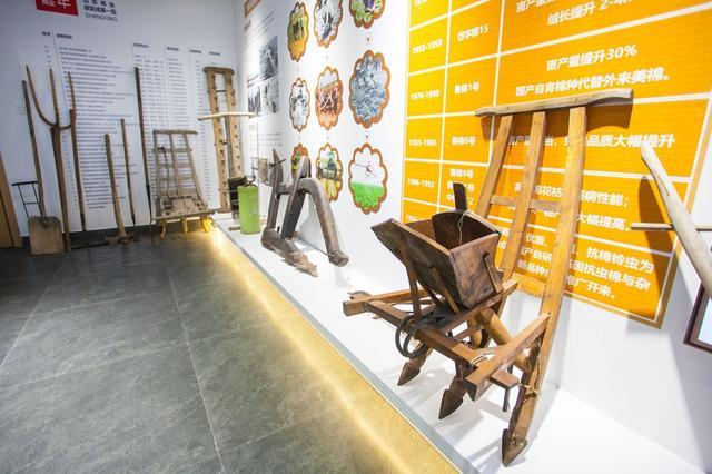 视频+大图!记者带你游览山东首家棉花主题博物馆,坐标:夏津