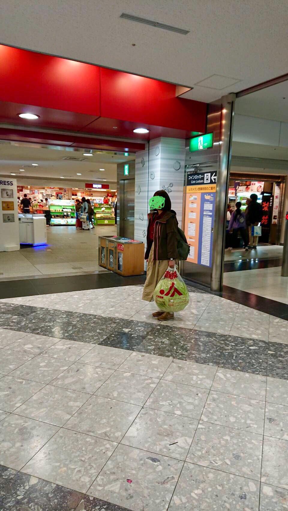 该男子决议坐飞机将那颗卷心菜带回东京(maidona消息)