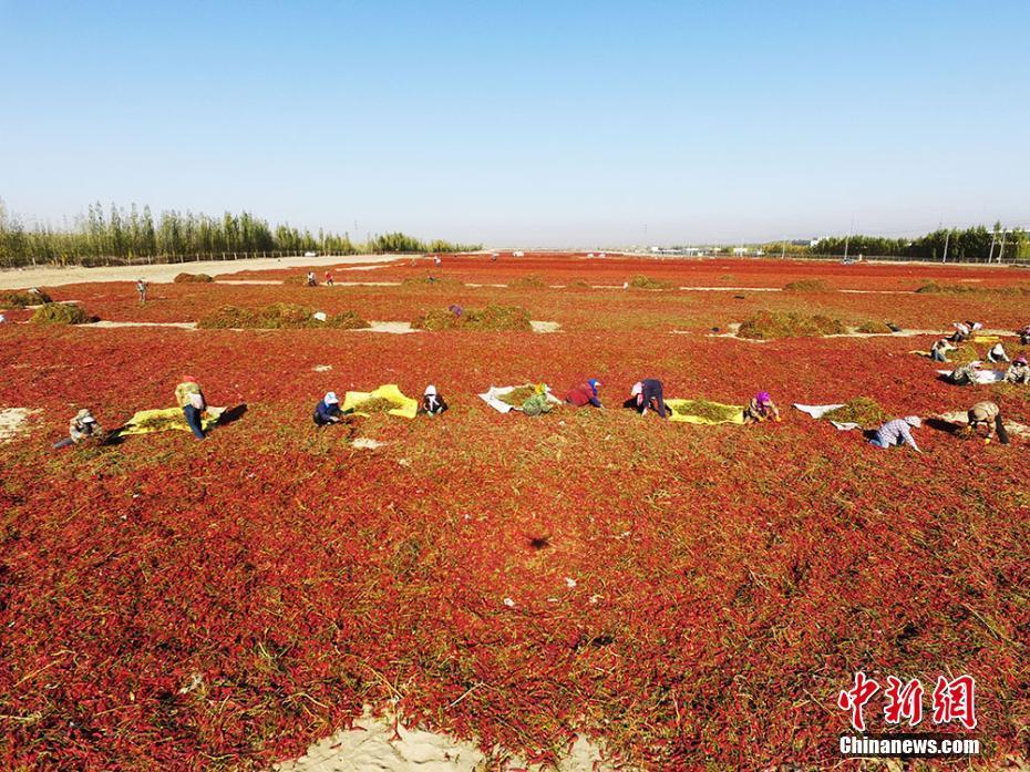 北京二手房市场分化:刚需走俏 改善型房源滞销