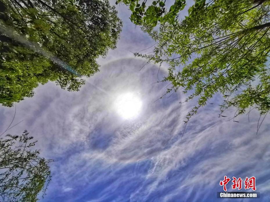 认识世界和改造世界是辩证的统一,表现在 ( )