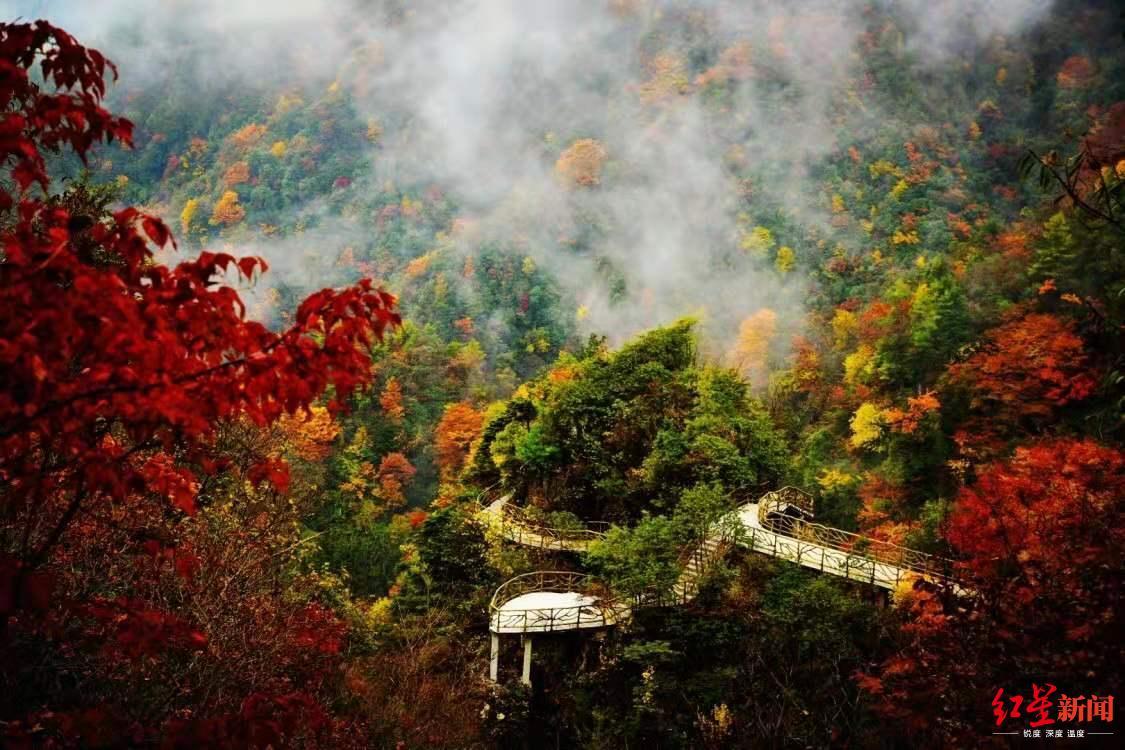 约起!四川省第十届乡村文化旅游