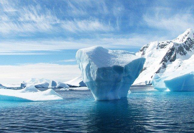 一场瘟疫正在全球海豹中蔓延,可怕的致命病毒竟是来自冰川融化?