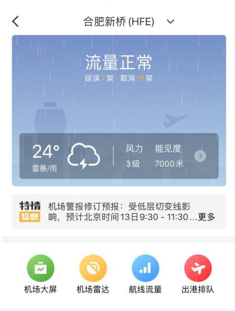 受雷雨天气影响 合肥新桥机场部分航班延误图片
