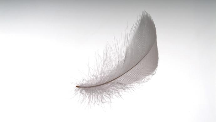 来自俄罗斯童话故事《神奇的羽毛笔》将在成都首演