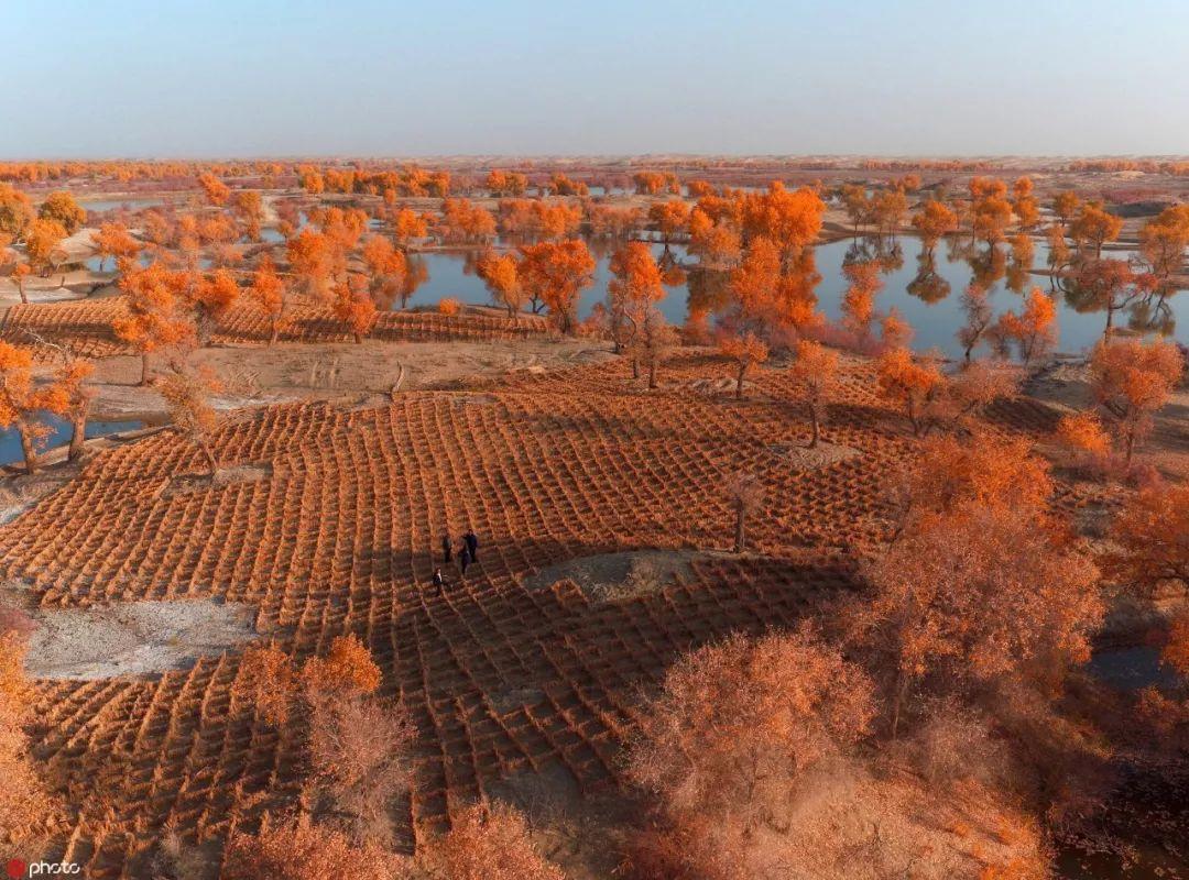 5123平台·河北省质检研究院设东光办事处助力国家级产业示范区建设