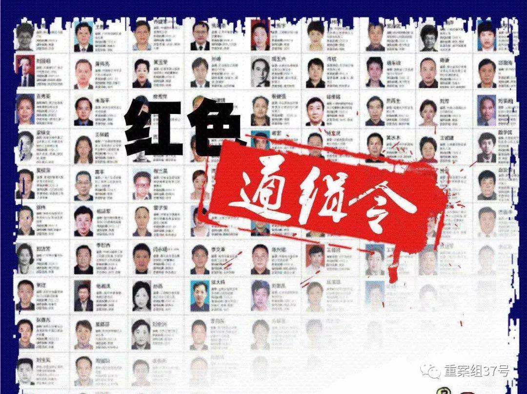 ▲2015年,刘梦平被列入红色通缉令名单。