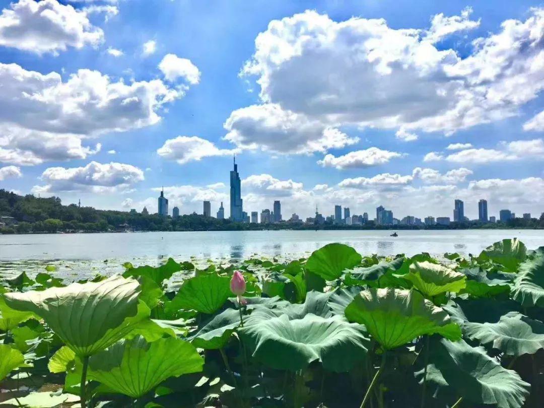 南京的蓝天白云美美美美美翻了!图片