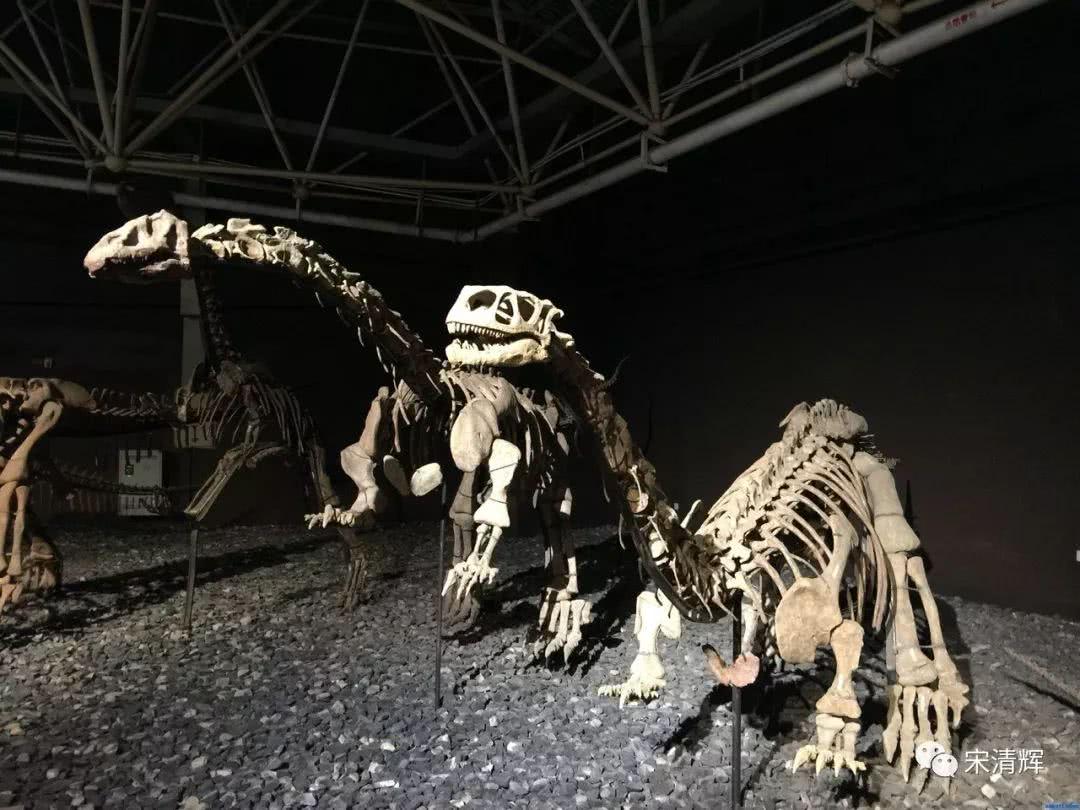 宋清辉:云南旅游收购恐龙谷并非