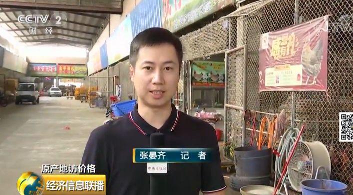 学生免费手机赚钱_记者产地调查:鸡肉价格怎么走 还能愉快地吃鸡否?