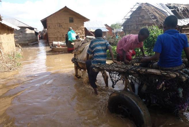 赢利线上娱乐-大湄公河次区域禁毒国际合作稳步推进