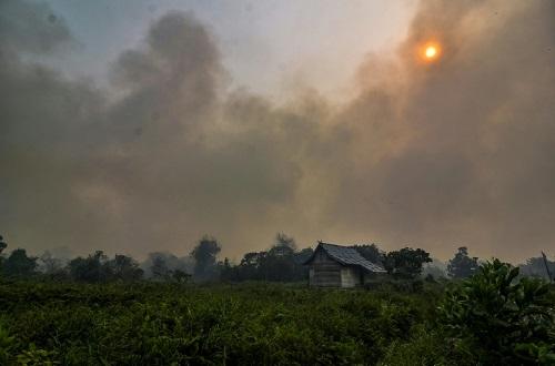 外媒:印尼森林大火雾霾成灾 数千学校170万学生全面停课