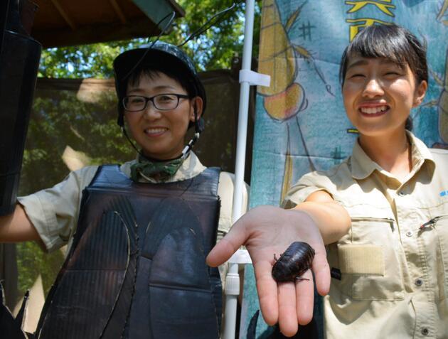 日本一动物园举办蟑螂展 展出来自世界各地约100只蟑螂