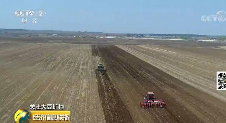 东北出大招扩种大豆每亩补贴350元 背后有啥深意美型妖精大混战66回