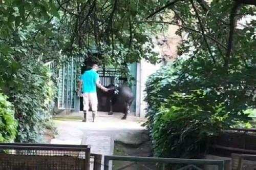 北京动物园抽打动物涉事饲养员受到停职检查处罚