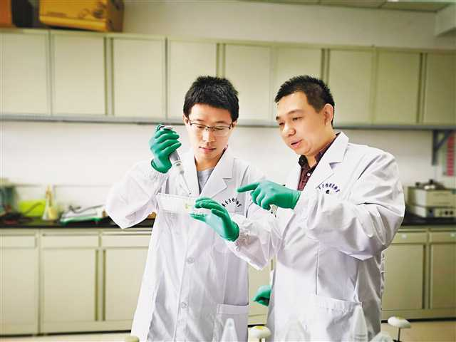 """重大教授及其团队研发出耐药细菌""""克星"""""""