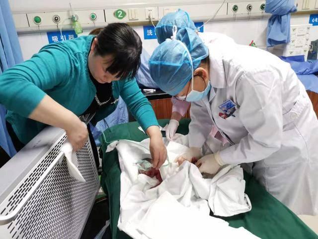 女子腹痛到医院看急诊,竟在厕所产下一男婴