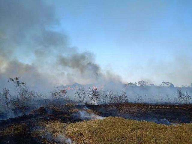 """突发!今天下午""""瓷都""""景德镇一草坪着火 过火面积约600平"""