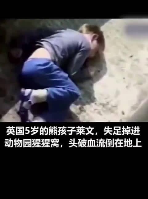 被大猩猩救下的小男孩如今已是3个孩子的父亲了