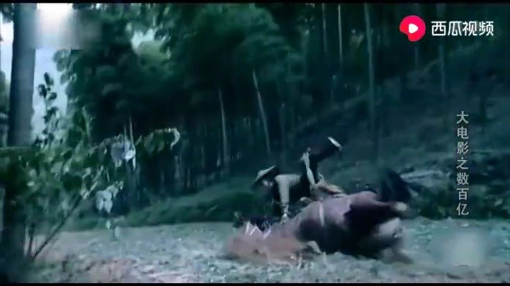 这是我看过的唯一的一部山寨比正片好看的电影爆笑版十面埋伏,这