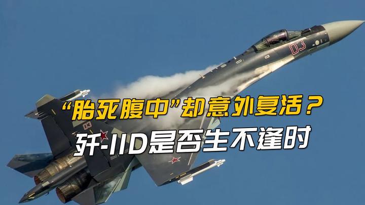 """""""胎死腹中""""却意外复活?歼-11D是否生不逢时,成悲催4.5代战机"""