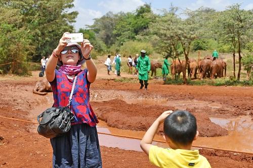 资料图片:2017年2月2日,在肯尼亚首都内罗毕的小象孤儿院,一名中国游客以小象为背景自拍留念。新华社记者 孙瑞博 摄