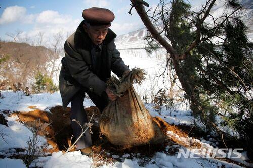 2015年12月3日,朝鲜球场郡,一位居民正在整理疑似美军遗骸的遗骨。(图片来源:韩国纽西斯通讯社)